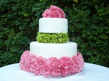pink-green-carnation-cake