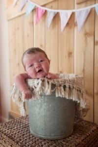 Arden - Newborn
